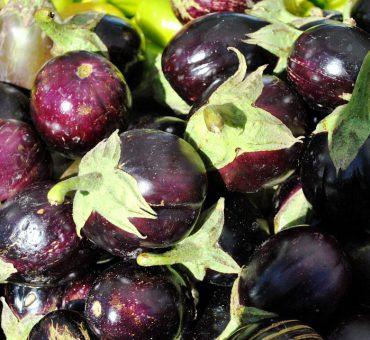 mini aubergine